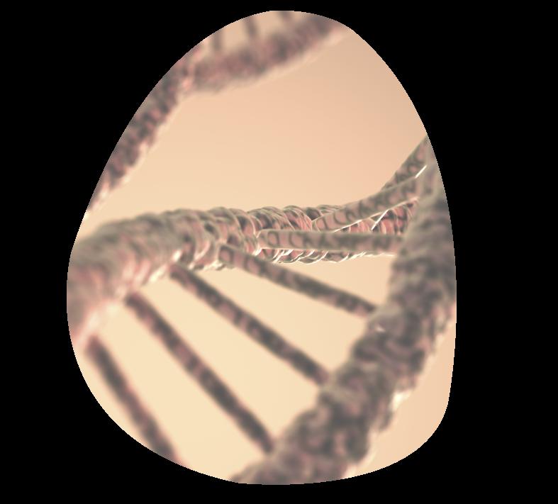 pruebas-genetica